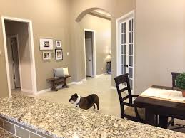 home paint interior how to paint interior walls of your home and colour them with