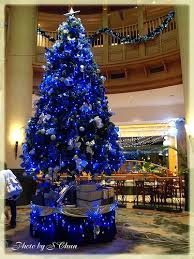 Blue Silver Christmas Tree Decorations Ideas by Best 25 Blue Christmas Trees Ideas On Pinterest Blue Christmas
