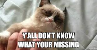 Good Grumpy Cat Meme - grumpy cat weknowmemes generator