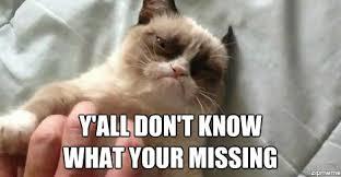 Cat Memes Generator - grumpy cat weknowmemes generator