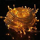 gold indoor string lights seasonal lighting home