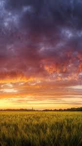 dramatic wallpaper hungary grain fields dramatic sky iphone 5 wallpaper hd free