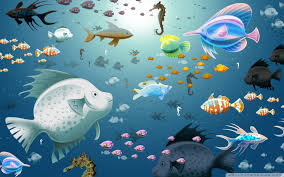 photo collection wallpapers download 1920x1200 fish