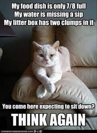 Give Me A Hug Meme - lovely 29 cat hug meme wallpaper site wallpaper site