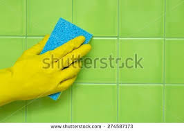 Bathroom Cleaning Sponge Bathroom Cleaning Stock Images Royalty Free Images U0026 Vectors