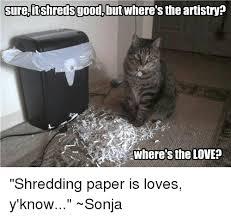 Shredding Meme - sureitshredsgood but where s the artistry where s the love