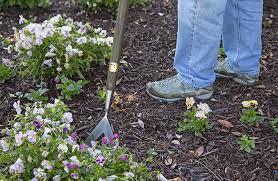 Gardening Tools Amazon by Amazon Com Joseph Bentley Traditional Garden Tools Stainless