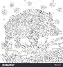 halo warthog drawing zentangle stylized cartoon wild boar razorback stock vector