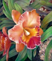 cattleya orchids ruffled cattleya orchid painting by nancy tilles