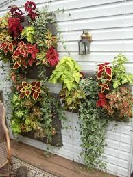 144 best hanging wall planters images on pinterest vertical
