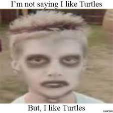 I Like Turtles Meme - image 267682 i like turtles know your meme