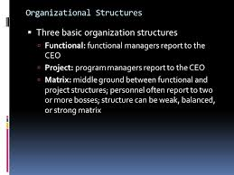 functional managers project management u0026 it project ppt download
