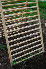 Vegetable Trellis Cucumber Supports Allow Them To Grow Up Instead Of Out