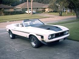 mach 1 mustang convertible 78 best 71 73 mach 1 mustang images on ford mustangs