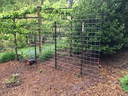 captivating hog wire fence panels home depot fence panel price of