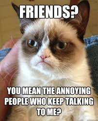friends you mean the annoying people who keep talking to me