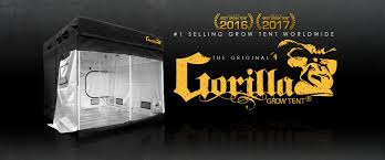 gorilla grow tent best indoor hydroponic and soil grow tents for sale