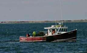 cape cod ocean cleanup yields tons of lost fishing gear new