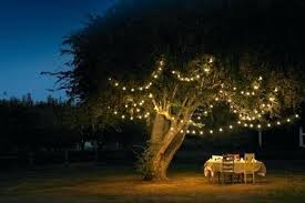 solar powered fairy lights for trees outdoor fairy lights solar string lights led fairy fairy garden