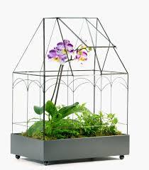 h potter glass terrarium for sale h potter