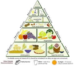 the college student food pyramid