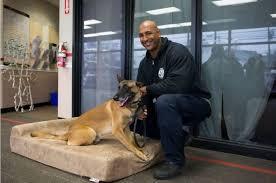 Barker Dog Bed Big Barker Donates Dog Beds To K9 Units Pet Age
