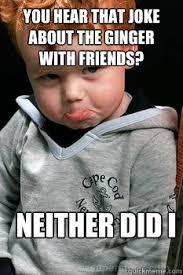 Ginger Memes - sad ginger memes quickmeme