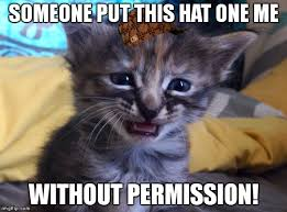 Cute Kitty Meme - sad kitty meme album on imgur