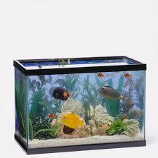 different types of aquariums aent us