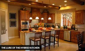 Hybrid Kitchen | the lure of the hybrid kitchen kitchen solvers franchise
