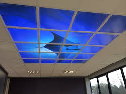 Sky Ceiling Light Led Suspended Ceiling Sky Panel Feature Lighting