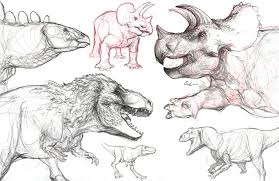 dinosaur sketches from lamnh by triceratopsian on deviantart