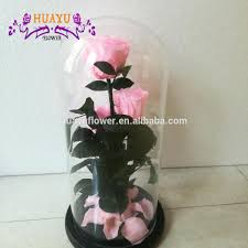 single giant immortal rose in glass dome preserved flowers for