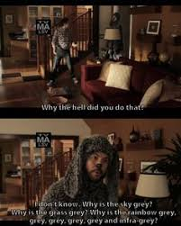 Wilfred Meme - wilfred best shows ever pinterest