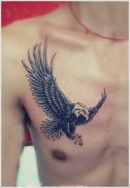astonishing bird tattoos