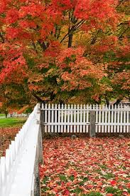 What Do Landscapers Do by Fall Landscaping Tips U0026 Ideas How To Take Care Of Your Yard In