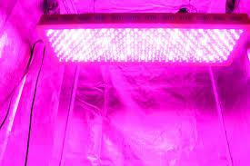 advanced platinum led grow lights advanced platinum series p900 900w 12 band led grow light dual veg
