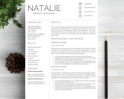 Amazing Resumes Examples Resume Headline Samples