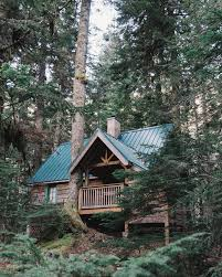 Small Cabin Home 258 Best Homes Images On Pinterest Small Houses Small