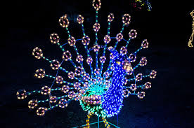 zoo lights houston 2017 dates zoolights