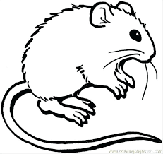 coloring page of a rat coloring page mouse rat coloring page rat coloring page mouse and