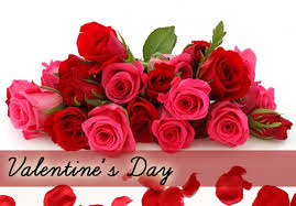 valentines day roses a toronto florist local toronto flower delivery