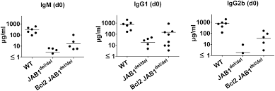 jab1 is essential for b cell development and germinal center