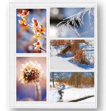 4x6 photo pages for 3 ring binder 4x6 photo album refill pages photo album refill pages exposures