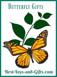 butterfly gifts butterfly gifts for butterfly best toys and gifts