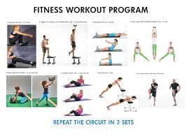 gym fitness programs