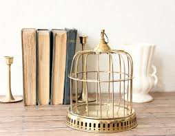 Bird Cage Decor 25 Unique Birdcage Decor Ideas On Pinterest Birdcages Birdcage
