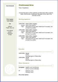 chronological resume format download information on a resume chronological resume templates elegant