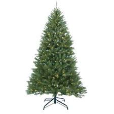 buy 12 foot tree from bed bath beyond