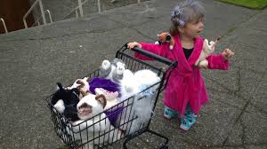 Meme Halloween Costume Kid U0027s Halloween Costume Crazy Cat Lady Davidbruceblog